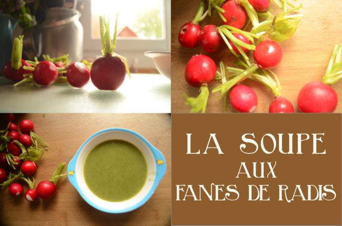 soupe fan de radis